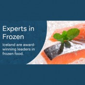 Iceland: Experts in Frozen Offer